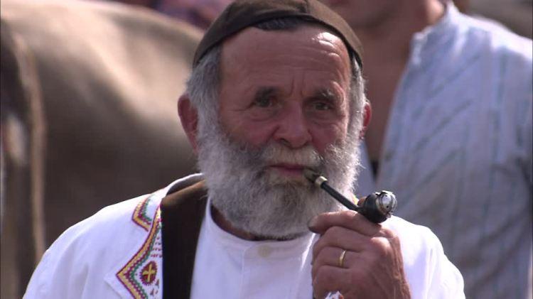 967869814-livestock-show-pipe-tobacco-full-beard-smoking